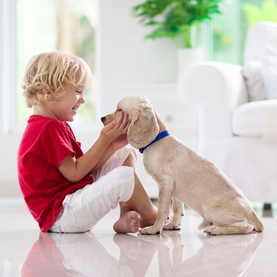 Young child sitting on the floor and holding a small puppy's head in his hands